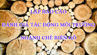 báo cáo đánh giá tác động môi trường ngành chế biến gỗ