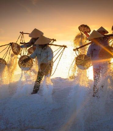 phạt tiền hàng trăm triệu khi không lập báo cáo đánh giá tác động môi trường cơ sở sản xuất muối