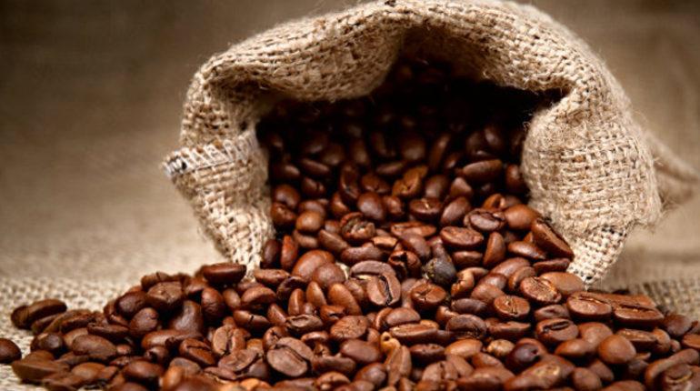 báo cáo hoàn thành công trình bảo vệ môi trường cơ sở sản xuất cà phê